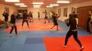Fotky ze školy boxu_107